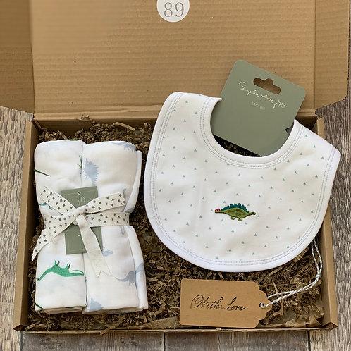 The Dinosaur Baby Box
