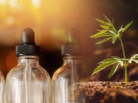 Comisiones del Senado aprueban uso lúdico de la mariguana