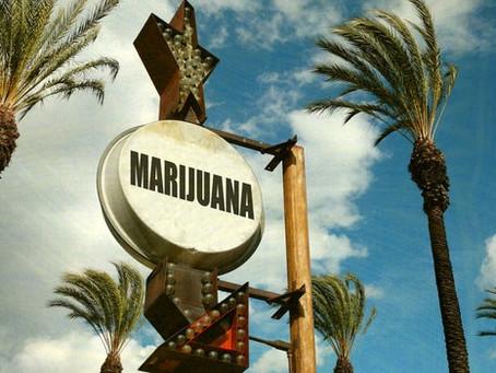 California lidera la forma de regular el mercado de marihuana