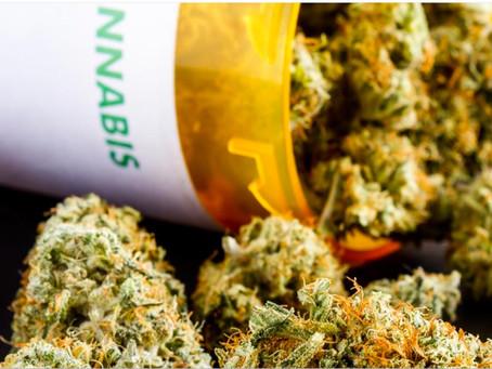 La primera clínica de cannabis en México busca crear tratamientos accesibles