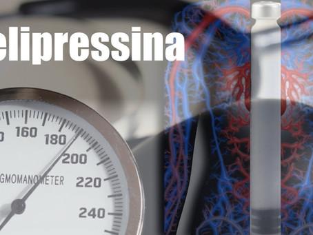 5 motivos para você repensar o uso do vasoconstritor Felipressina em pacientes hipertensos