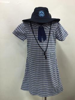 Girls cotton check tunic