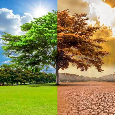 cambio climatico.jpg