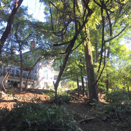 BEFORE-Major Transformation in Winston Salem