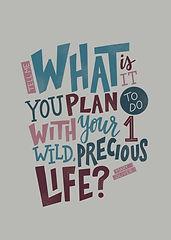 One Wild Precious Life.jpg