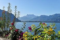 lac-leman-voyage-suisse.jpg