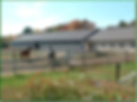 Silvercyst Farm 1.jpg