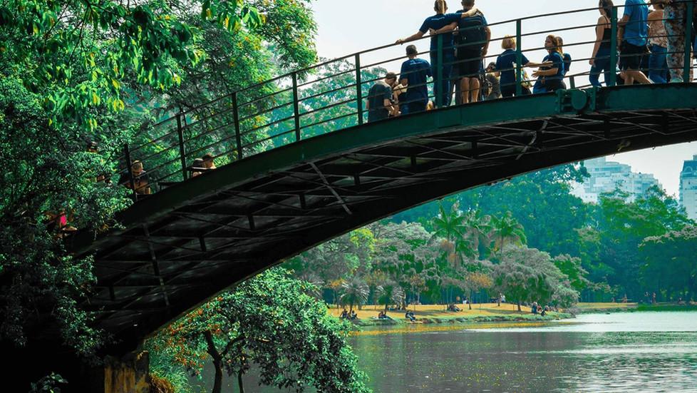 Curiosidades e fatos interessantes que você não sabia do Parque Ibirapuera