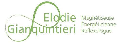Logo-site-Gianquintieri.JPG