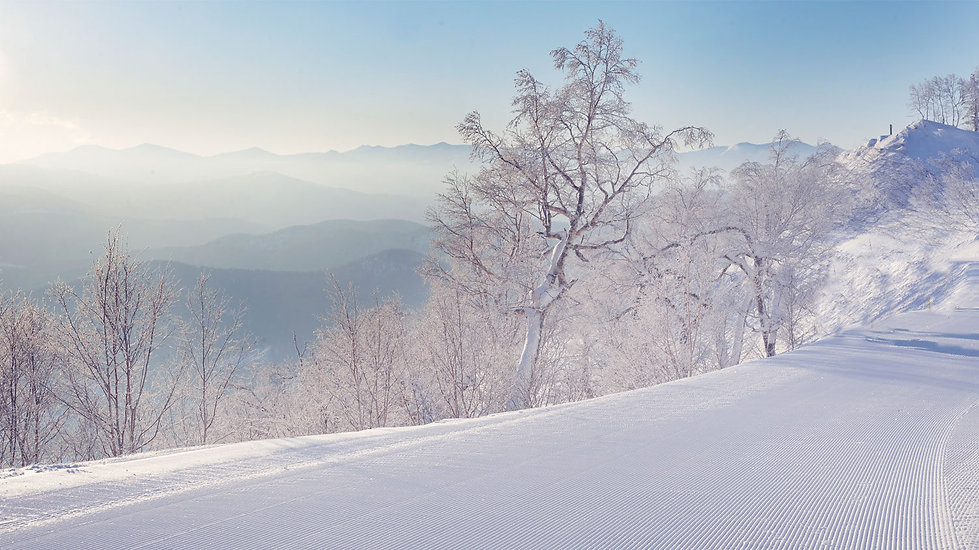 best-family-ski-resort-japan-1500x842.jp