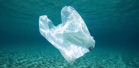 485px-plasticbag-in-water.jpg