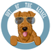Out of the Kennel - What We're About!