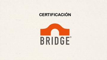 Video Certificación Bridge