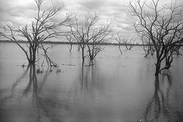 Craig Allsop Western Australia Photographer Anthropologist Desert Surfing
