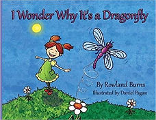 I Wonder Why It's a Dragonfly