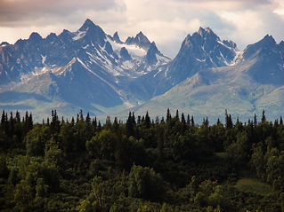 alaska-forest-hd-wallpaper-792.jpg