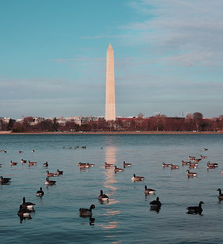WashDC_pexels-photo-739047.jpeg