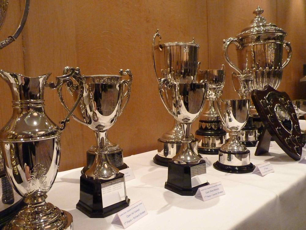 2014 Trophies.jpg