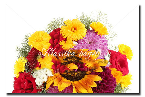 Цветы_86