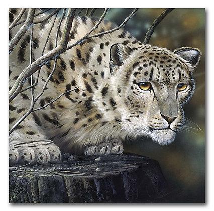 """""""Леопард"""""""