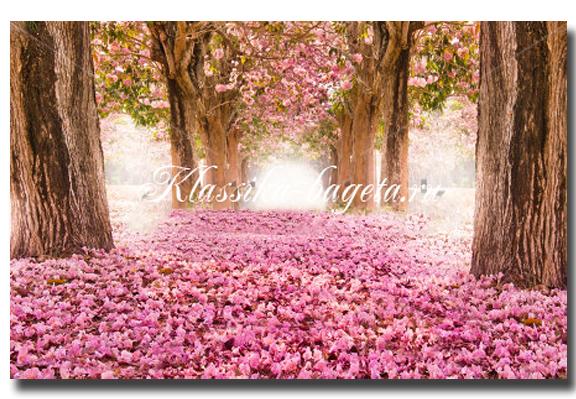 Цветы_47