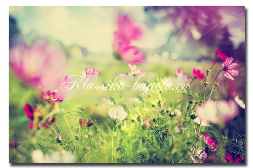 Цветы_94