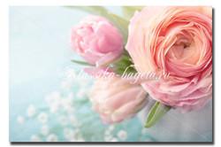 Цветы_73