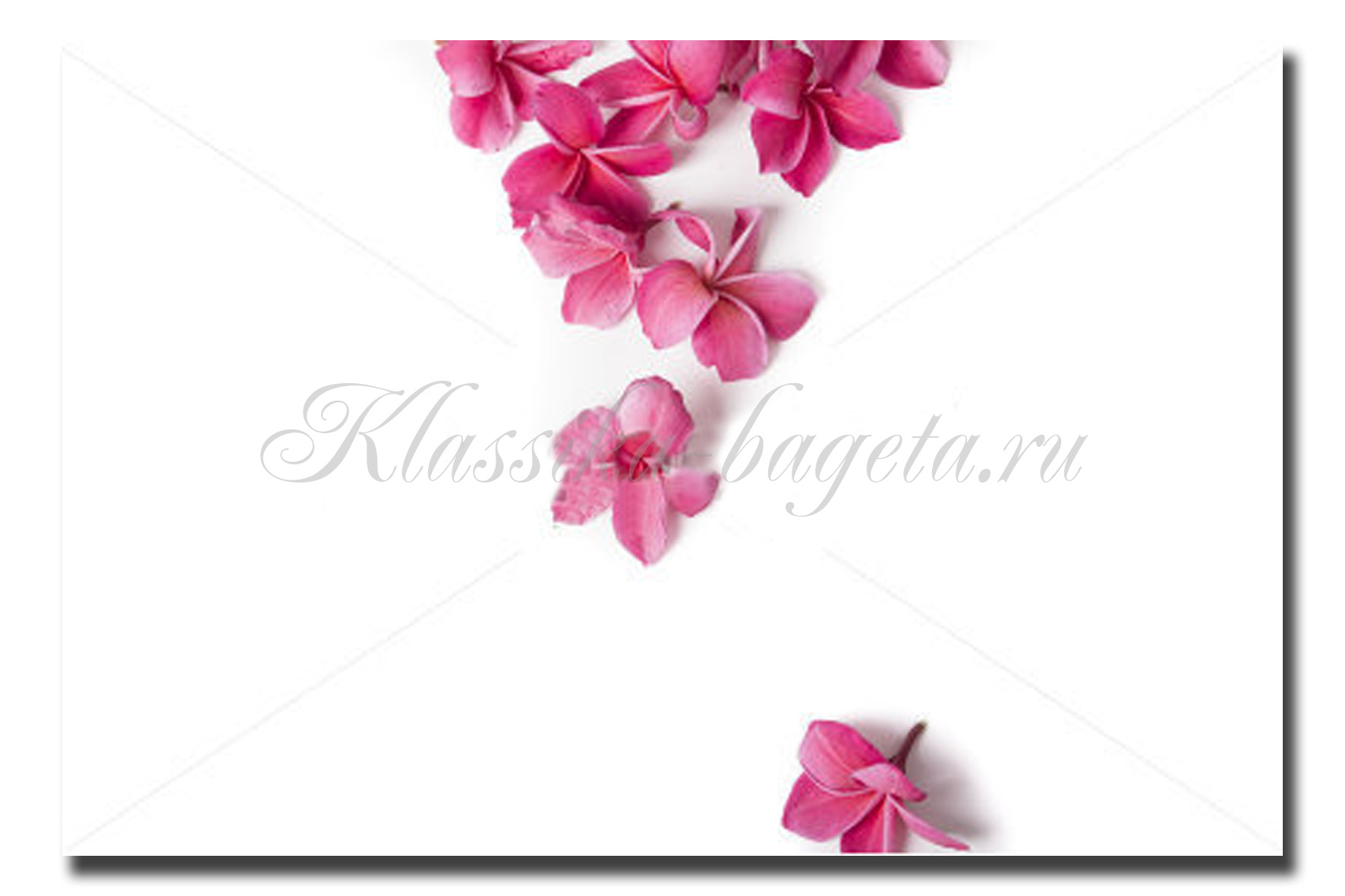 Цветы_129