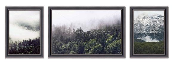 "Композиция картин ""Лес и горы"""