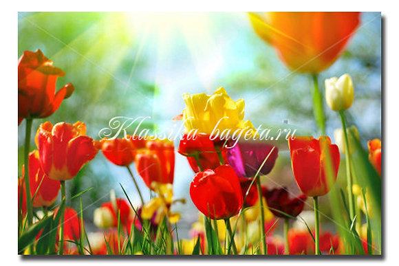 Цветы_98