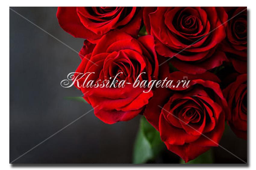 Цветы_102