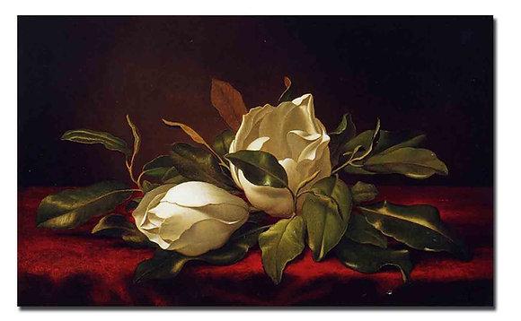 "Картина_Хед М., ""Цветы магнолии"""