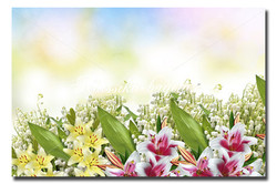 Цветы_93