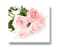 Цветы_121