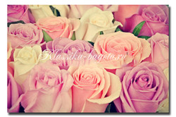 Цветы_72