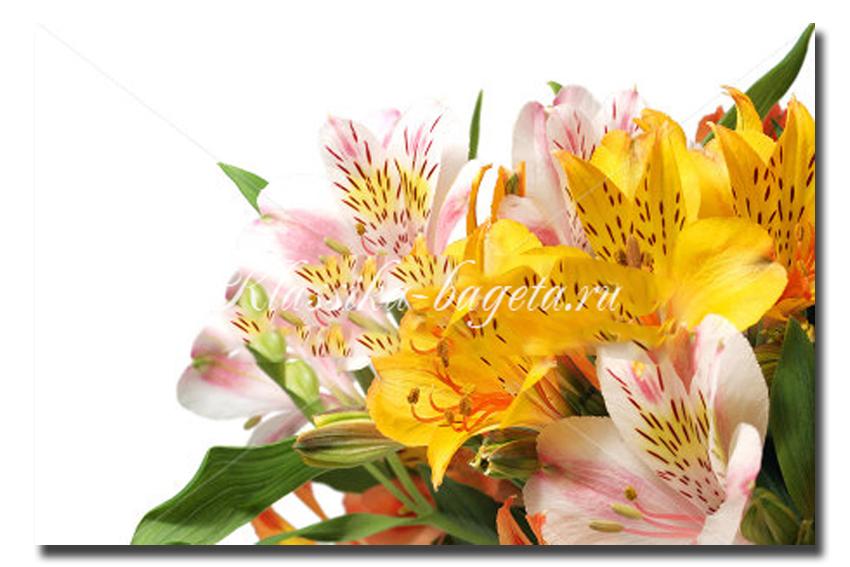 Цветы_88