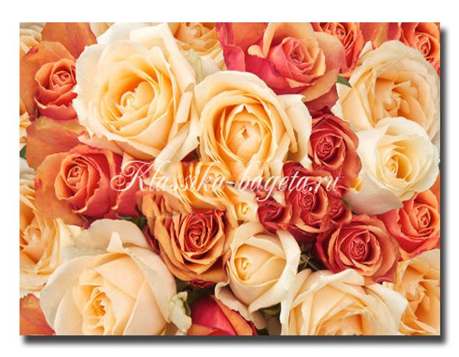 Цветы_20