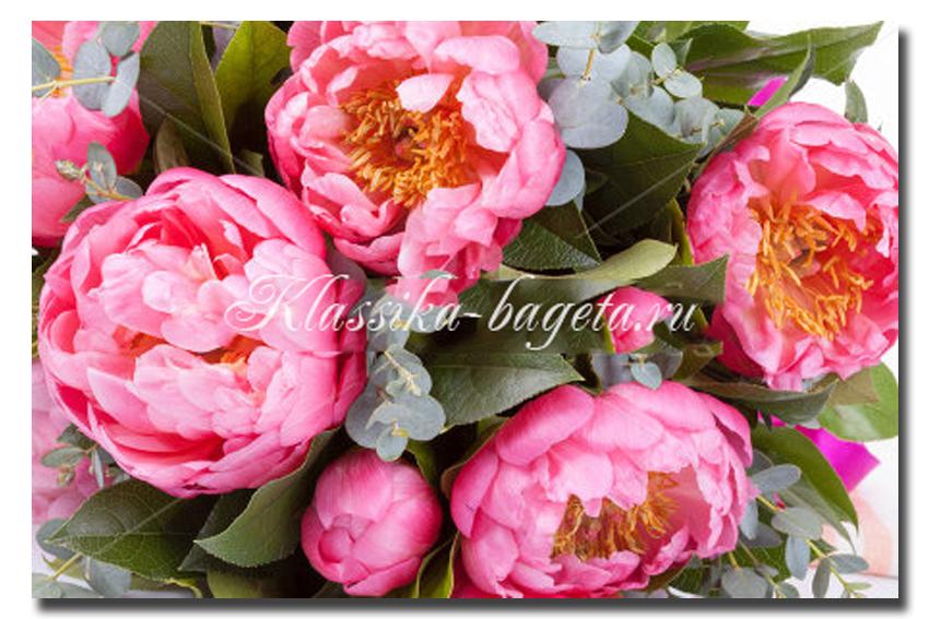 Цветы_97