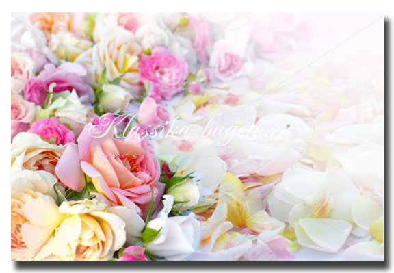 Цветы_54