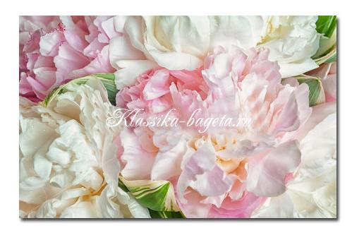 Цветы_132