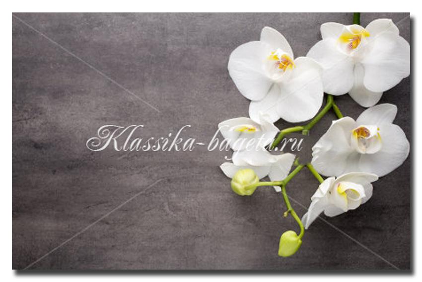 Цветы_85