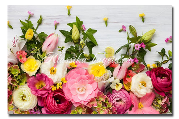 Цветы_78