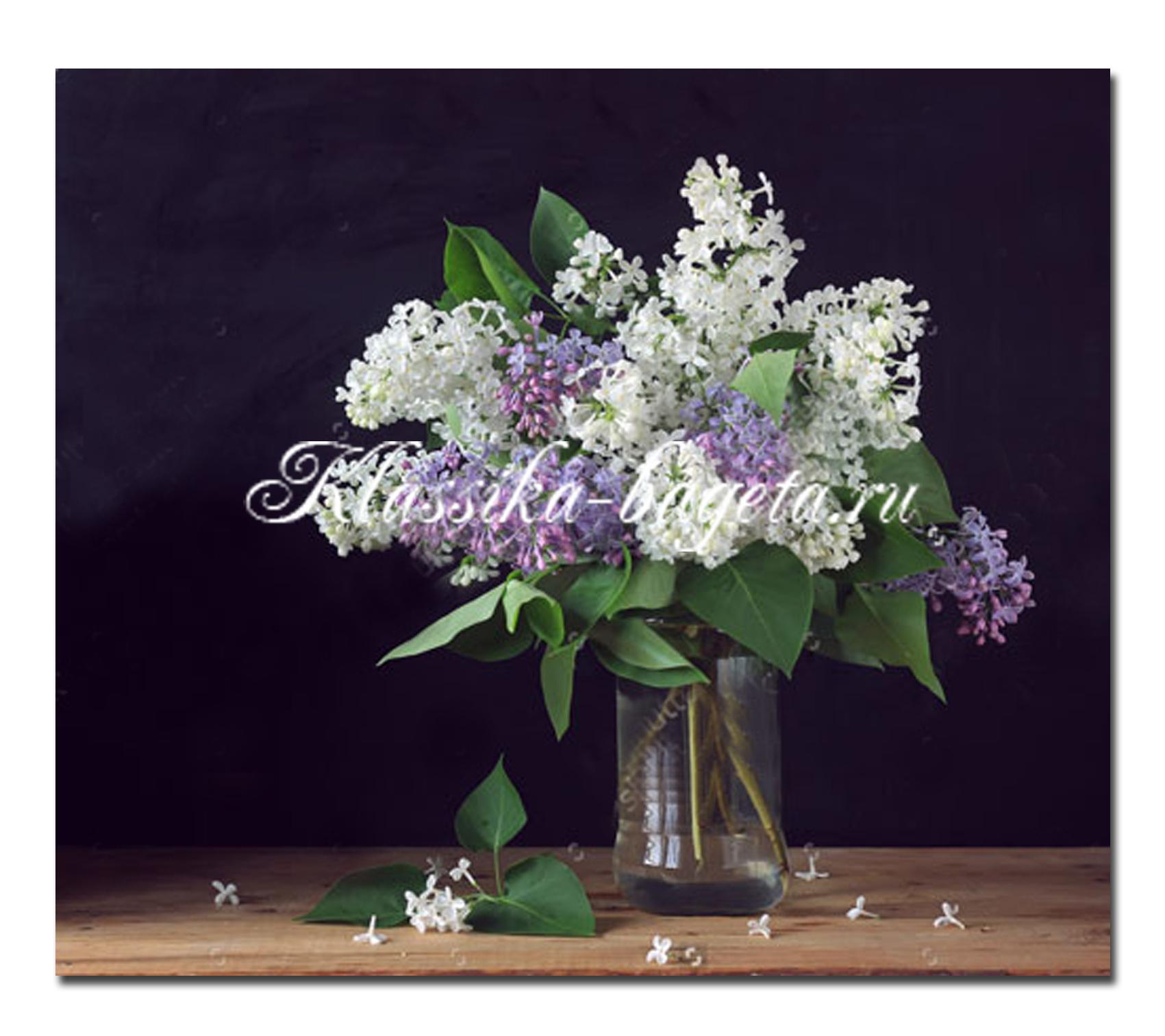 Цветы_34