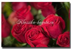 Цветы_52