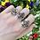 Thumbnail: Garnet in the Garden Ring