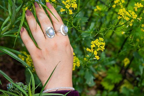 Silver Shield Rainbow Moonstone Ring