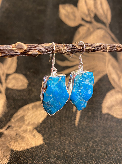 Precious Turquoise Earrings