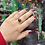 Thumbnail: Star Enstatite Gold Plated Sterling Silver Ring