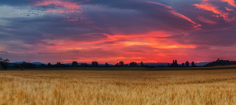 Plains-Land-Sunset.png