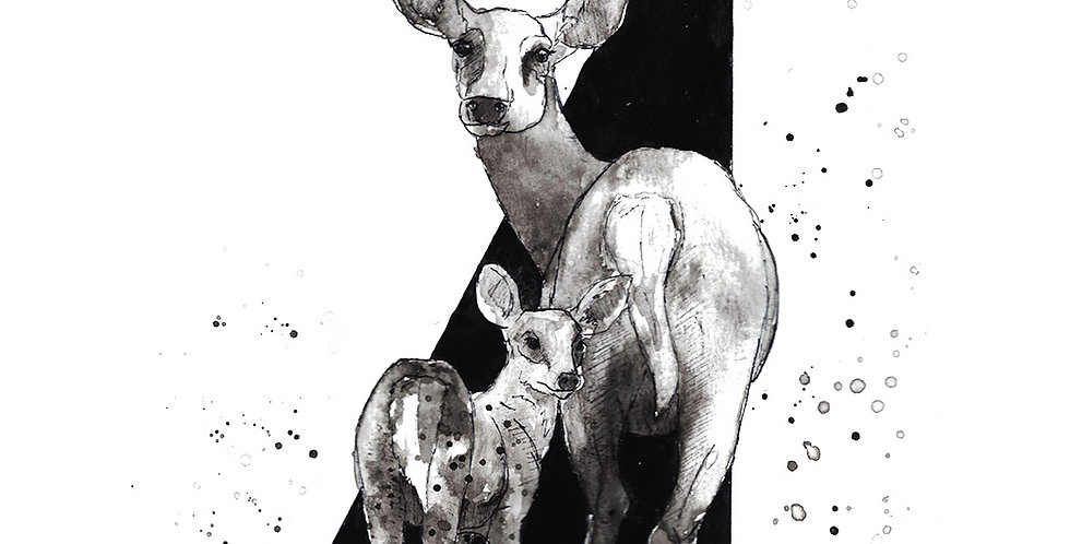 Triangle Doe and Fawn